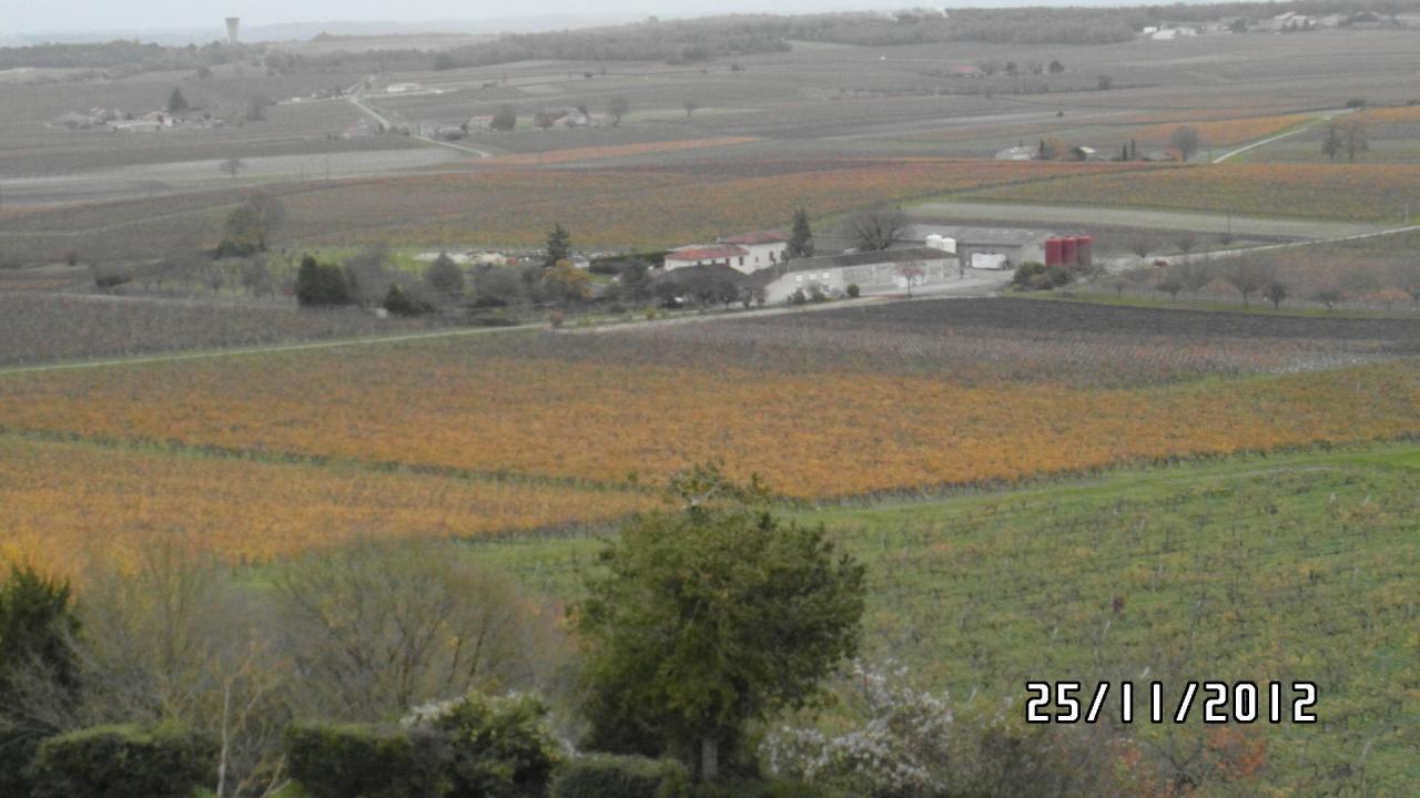 Vue aérienne du vignoble Boutevillois!!!!!